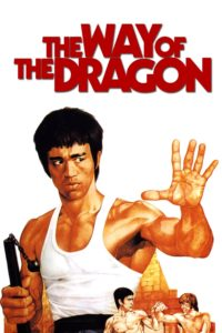 "Poster for the movie ""The Way of the Dragon"""